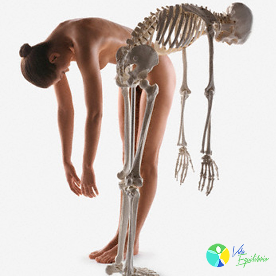 osteoporose_alimentacao_vida_equilibrio