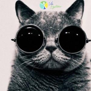 oculos_escuros